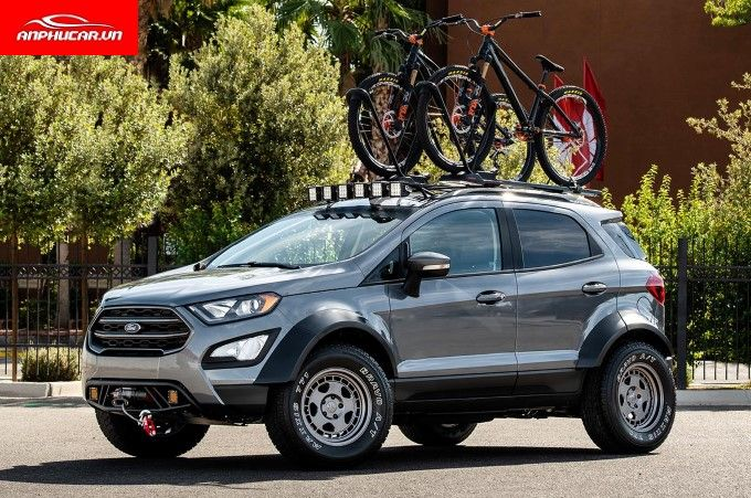 Ford Ecosport Cu Hong Xe